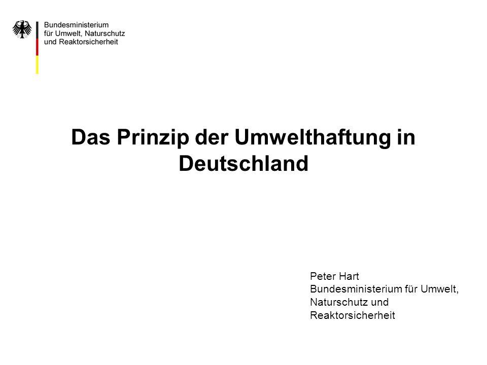 Das Prinzip der Umwelthaftung in Deutschland