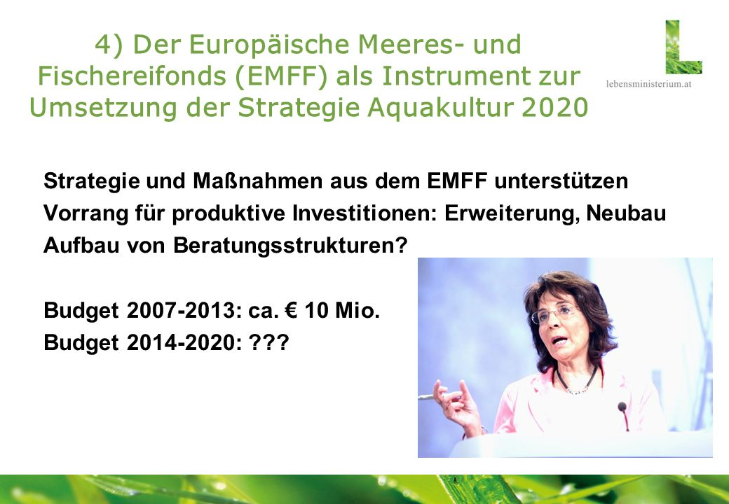 4) Der Europäische Meeres- und Fischereifonds (EMFF) als Instrument zur Umsetzung der Strategie Aquakultur 2020
