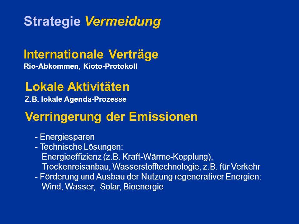 Strategie Vermeidung Internationale Verträge Lokale Aktivitäten
