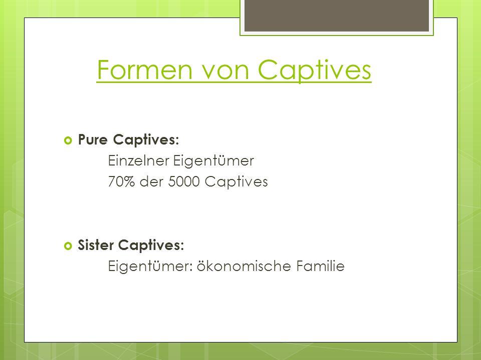 Formen von Captives Pure Captives: Einzelner Eigentümer