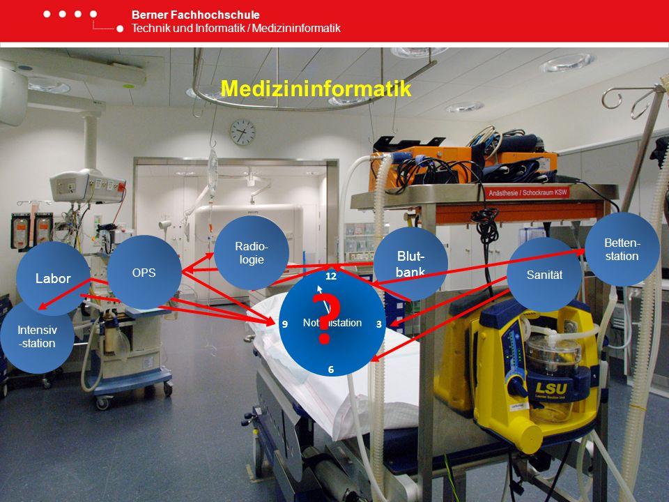 Medizininformatik Blut-bank Labor Berner Fachhochschule