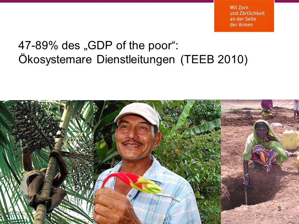 """47-89% des """"GDP of the poor : Ökosystemare Dienstleitungen (TEEB 2010)"""
