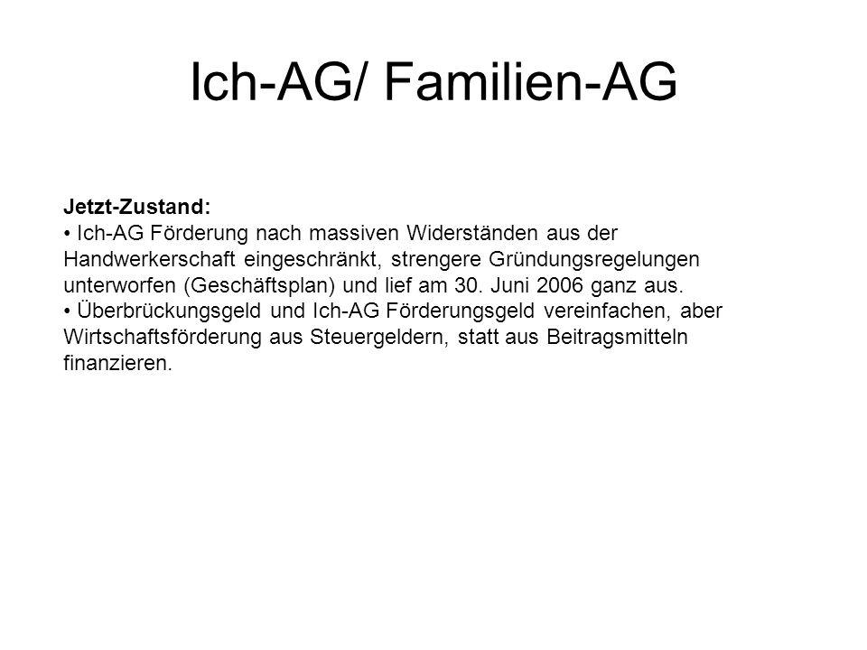 Ich-AG/ Familien-AG Jetzt-Zustand:
