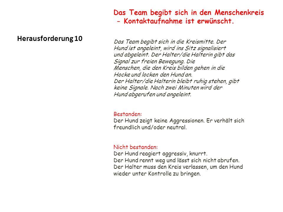 Herausforderung 10 Das Team begibt sich in den Menschenkreis