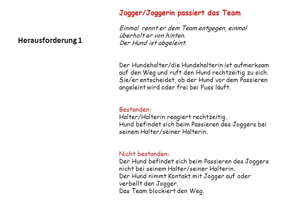 Herausforderung 1 Jogger/Joggerin passiert das Team