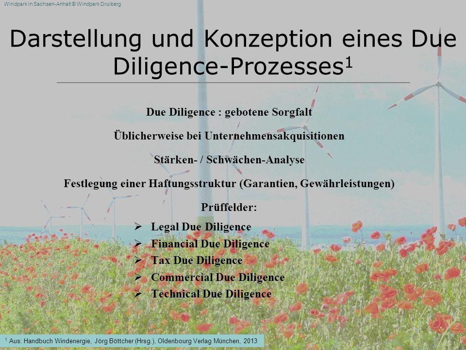 Darstellung und Konzeption eines Due Diligence-Prozesses1