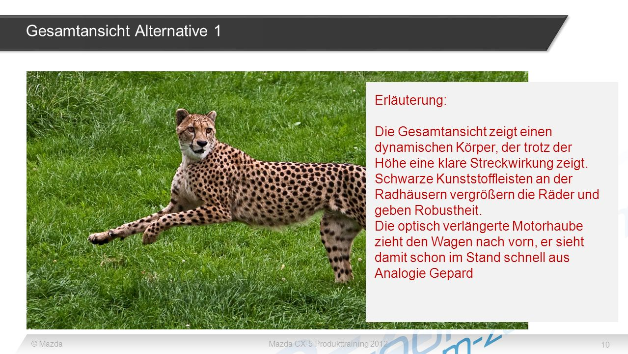 Gesamtansicht Alternative 1