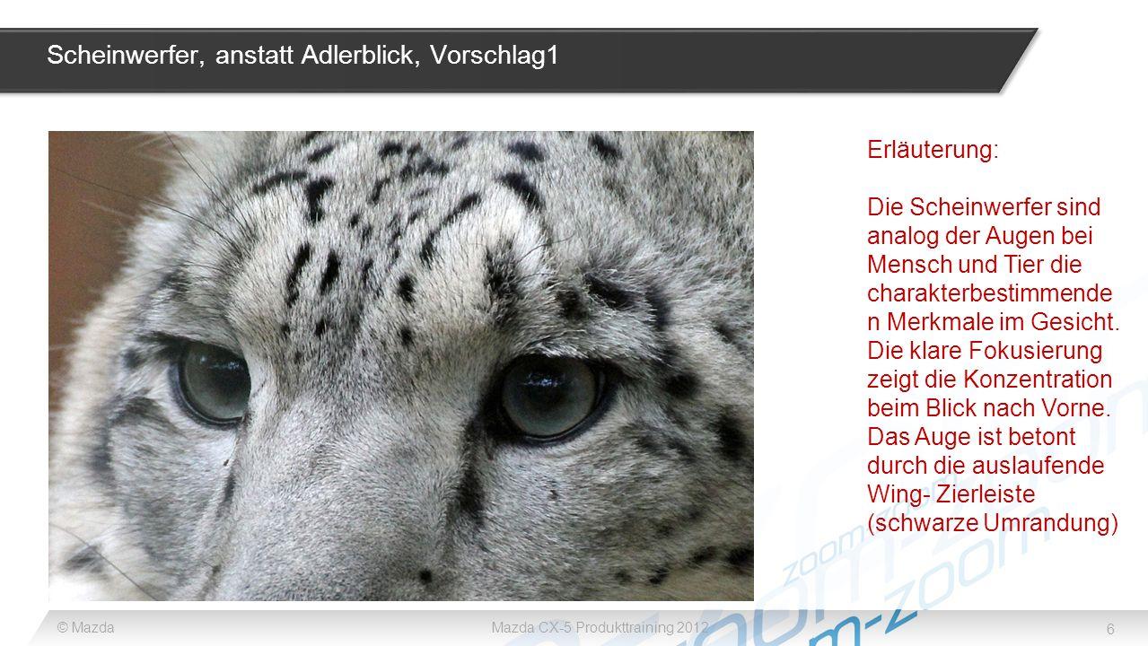 Scheinwerfer, anstatt Adlerblick, Vorschlag1