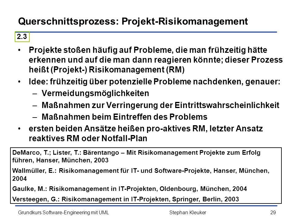 Querschnittsprozess: Projekt-Risikomanagement