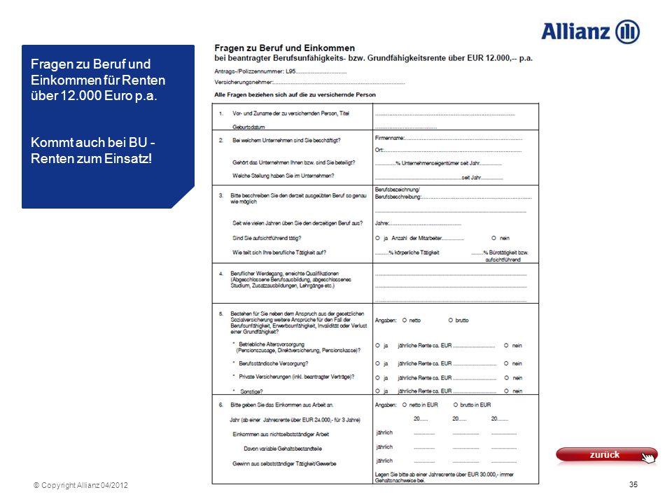 Fragen zu Beruf und Einkommen für Renten über 12. 000 Euro p. a