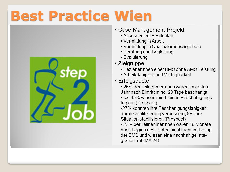 Best Practice Wien Case Management-Projekt Zielgruppe Erfolgsquote