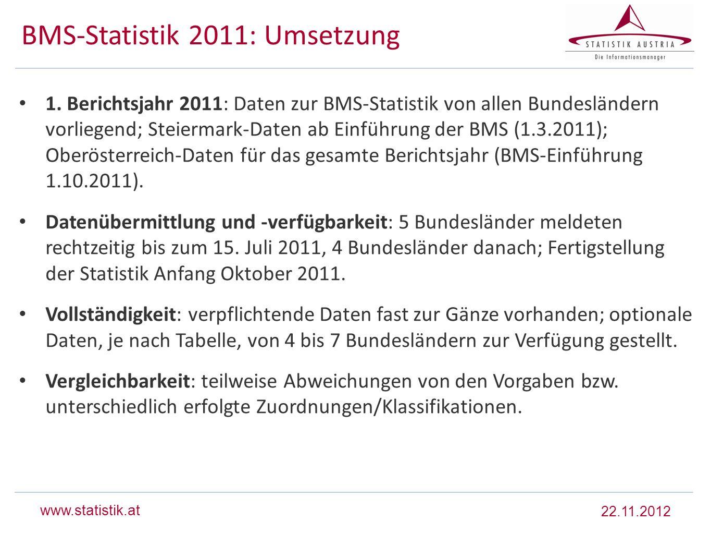 BMS-Statistik 2011: Umsetzung