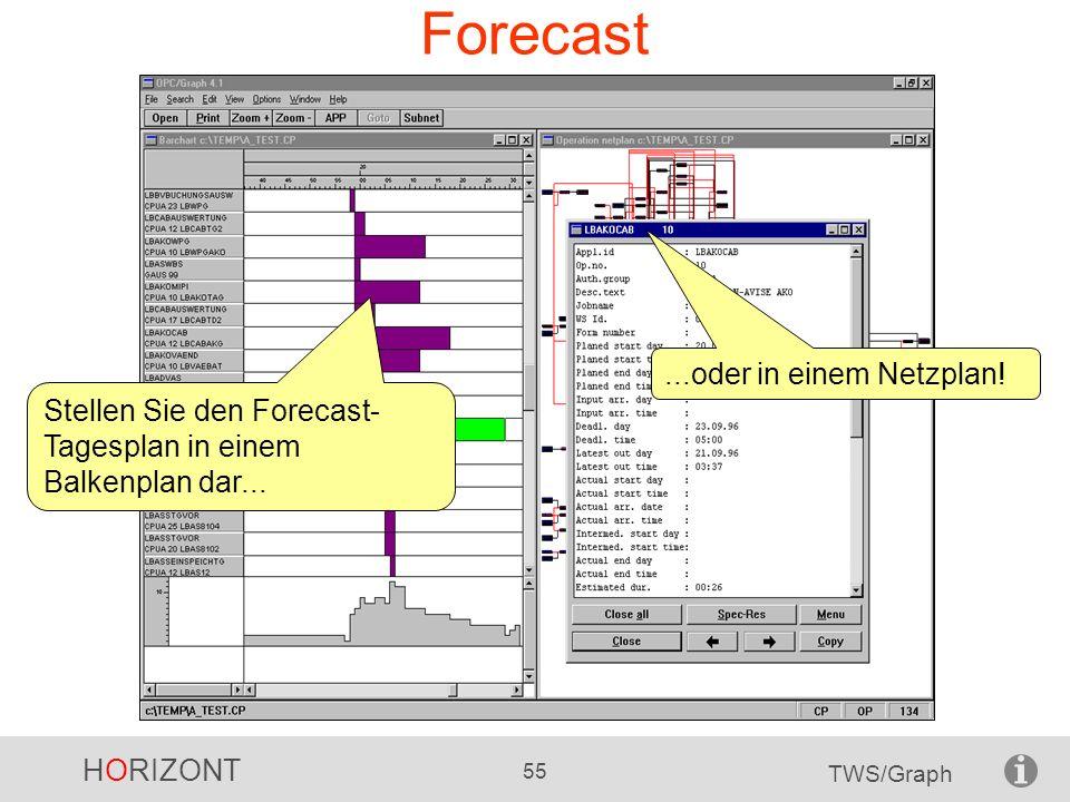 Forecast ...oder in einem Netzplan!