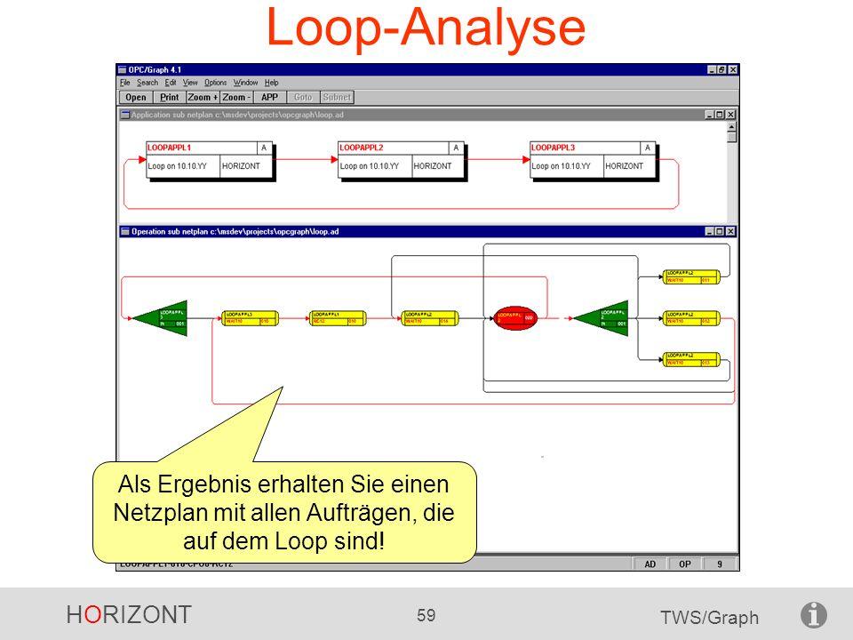 Loop-Analyse Als Ergebnis erhalten Sie einen Netzplan mit allen Aufträgen, die auf dem Loop sind!