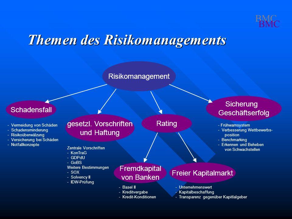 Themen des Risikomanagements