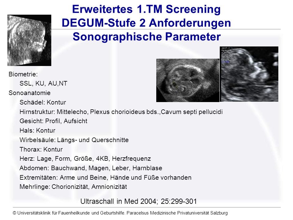 Erweitertes 1.TM Screening DEGUM-Stufe 2 Anforderungen Sonographische Parameter