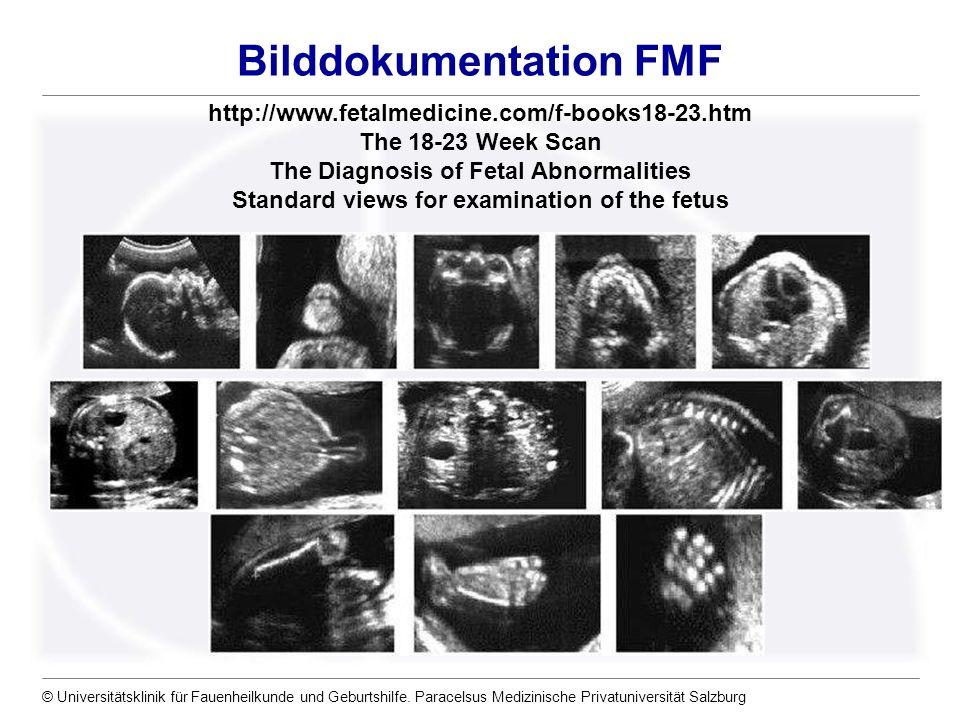 Bilddokumentation FMF