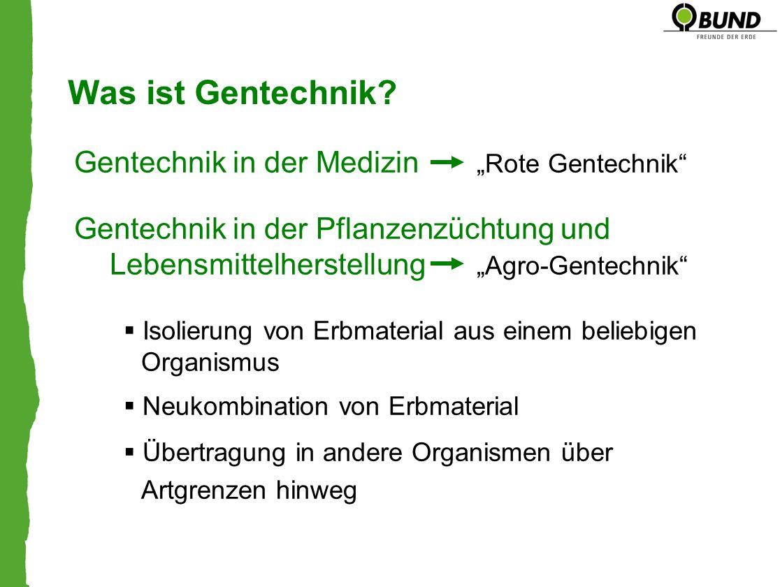 """Was ist Gentechnik Gentechnik in der Medizin """"Rote Gentechnik"""
