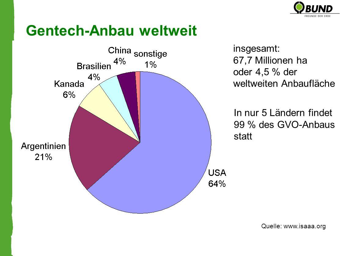 Gentech-Anbau weltweit