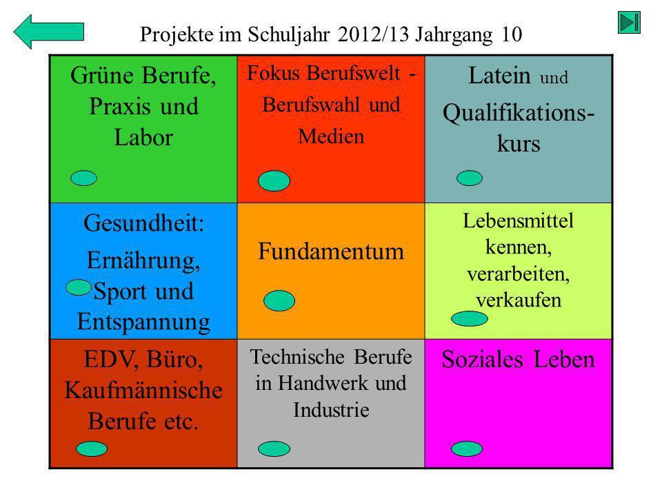 Projekte im Schuljahr 2012/13 Jahrgang 10