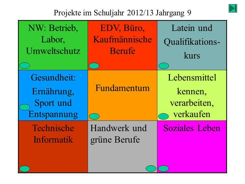 Projekte im Schuljahr 2012/13 Jahrgang 9