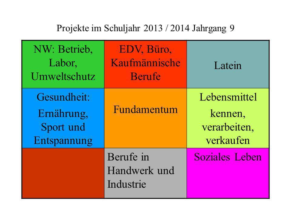 Projekte im Schuljahr 2013 / 2014 Jahrgang 9