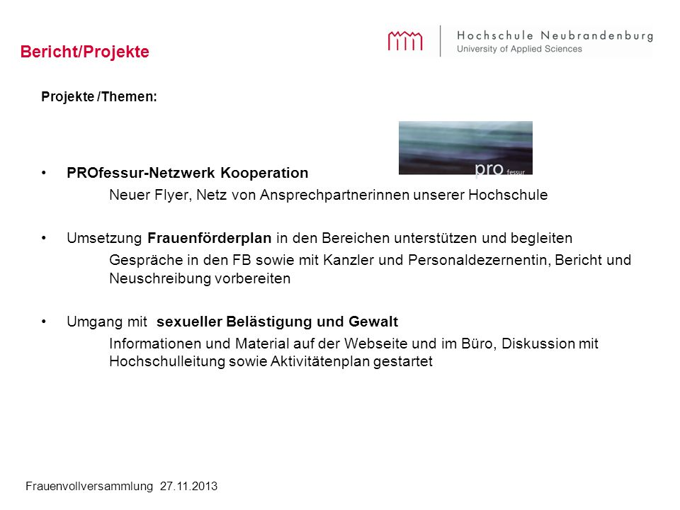 Bericht/Projekte PROfessur-Netzwerk Kooperation