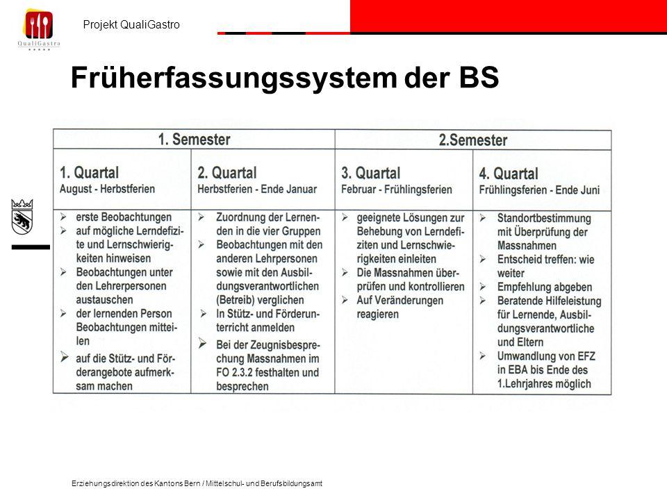 Früherfassungssystem der BS