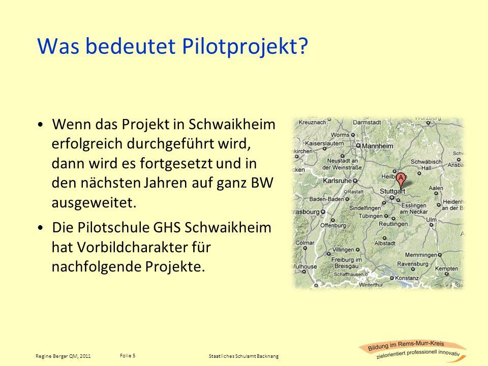 Was bedeutet Pilotprojekt