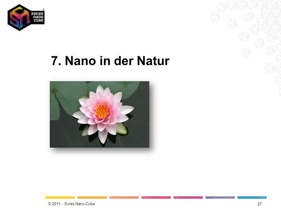 7. Nano in der Natur