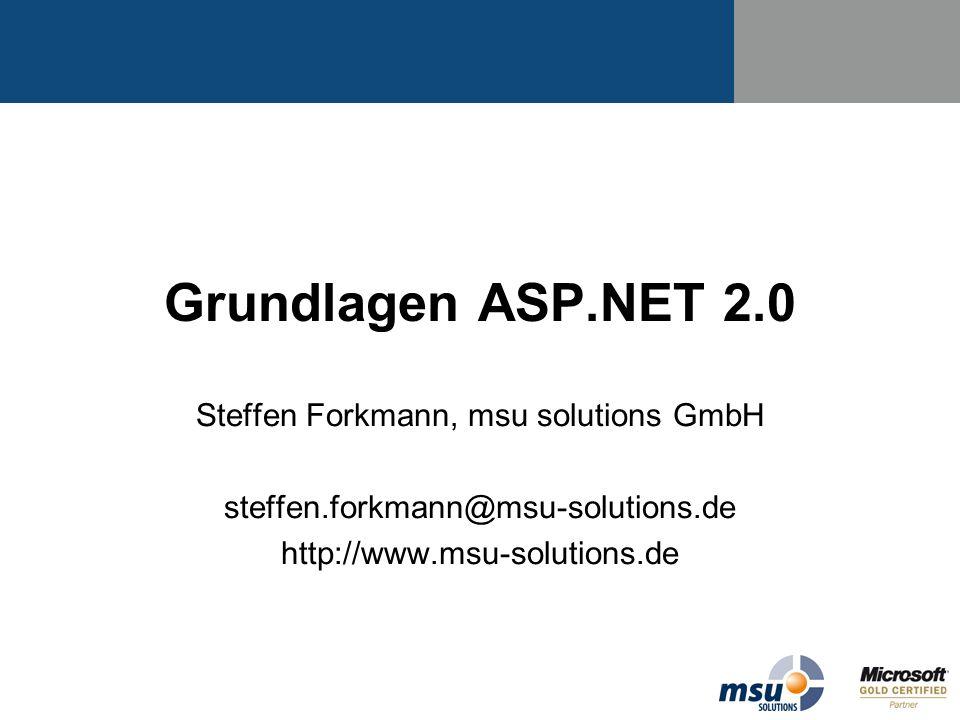 Steffen Forkmann, msu solutions GmbH