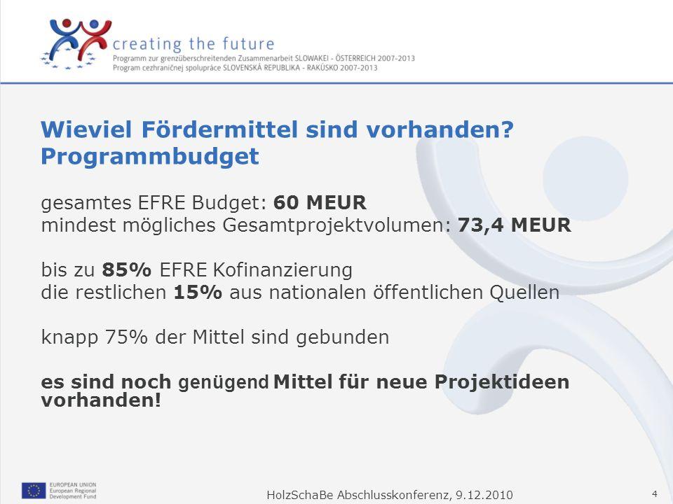 Wieviel Fördermittel sind vorhanden Programmbudget