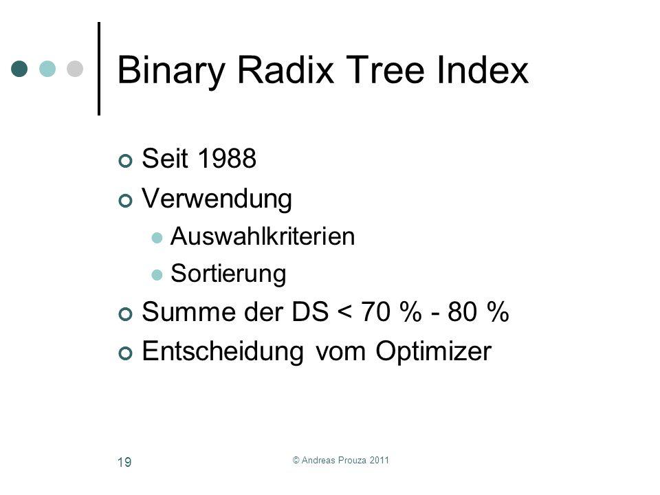 Binary Radix Tree Index