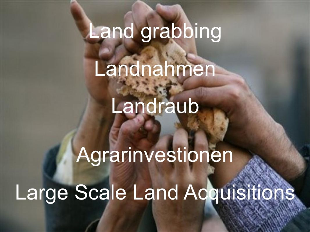 Large Scale Land Acquisitions