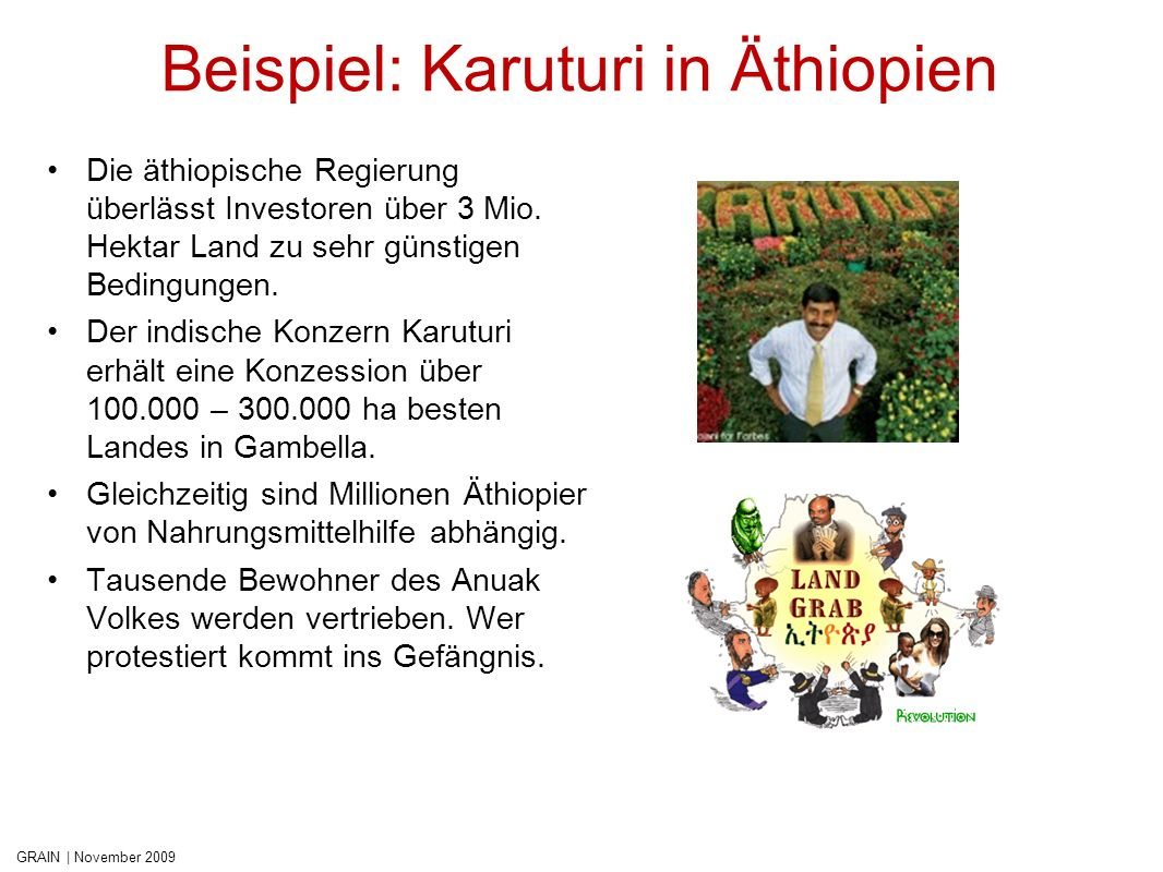 Beispiel: Karuturi in Äthiopien