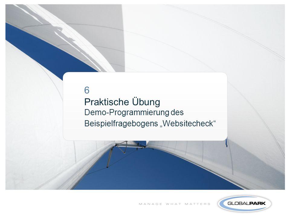 """6 Praktische Übung Demo-Programmierung des Beispielfragebogens """"Websitecheck"""