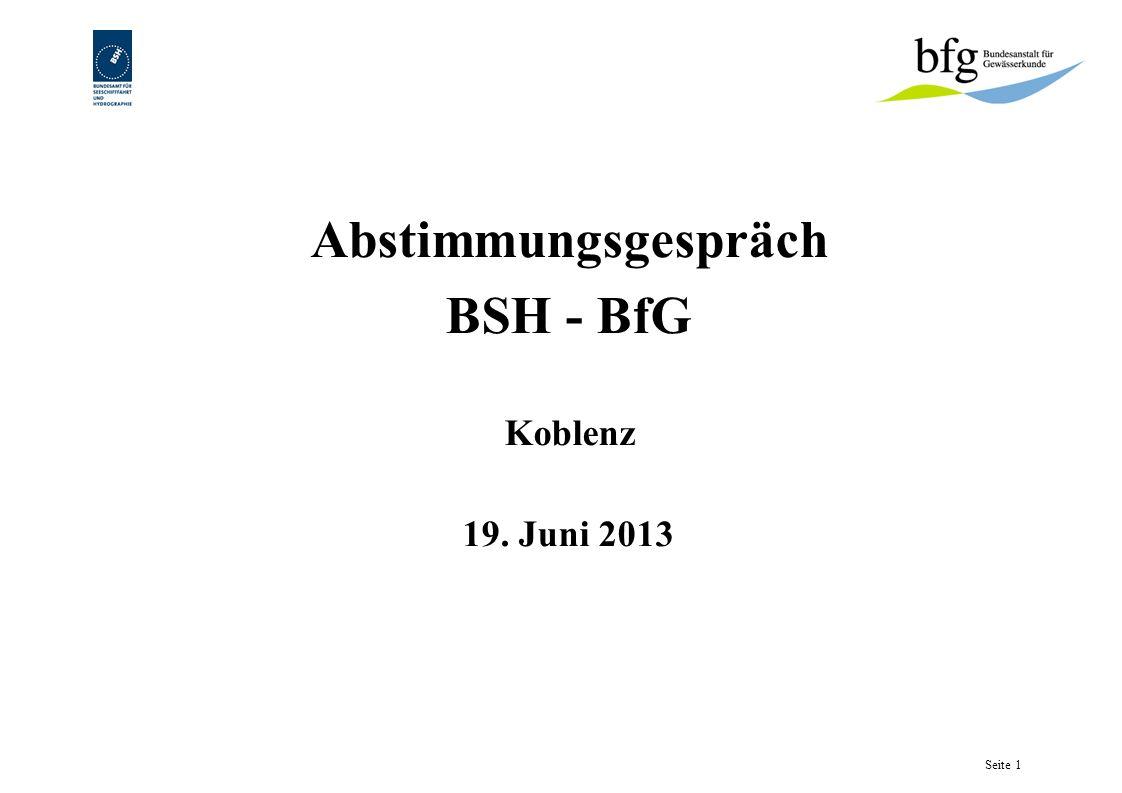 Abstimmungsgespräch BSH - BfG