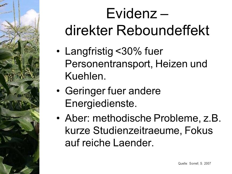 Evidenz – direkter Reboundeffekt