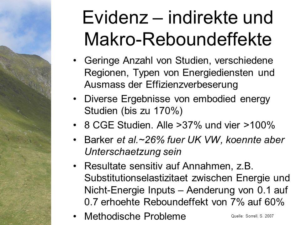 Evidenz – indirekte und Makro-Reboundeffekte