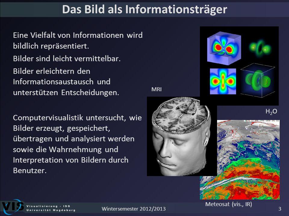 Das Bild als Informationsträger