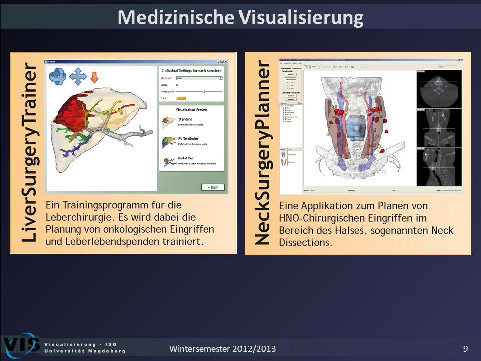 Medizinische Visualisierung