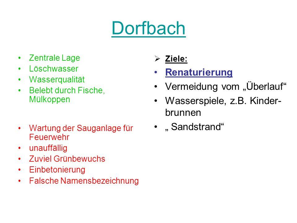 """Dorfbach Renaturierung Vermeidung vom """"Überlauf"""