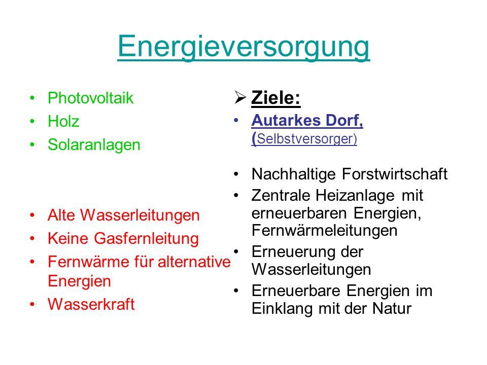 Energieversorgung Ziele: Photovoltaik Holz
