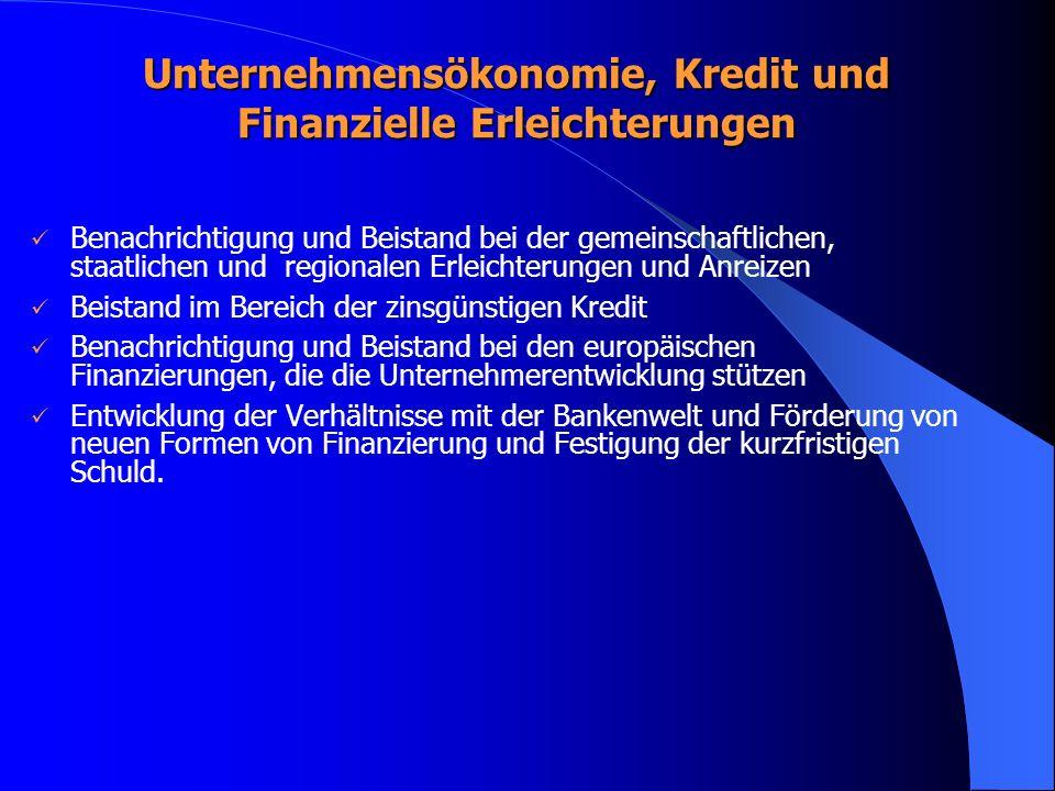 Unternehmensökonomie, Kredit und Finanzielle Erleichterungen