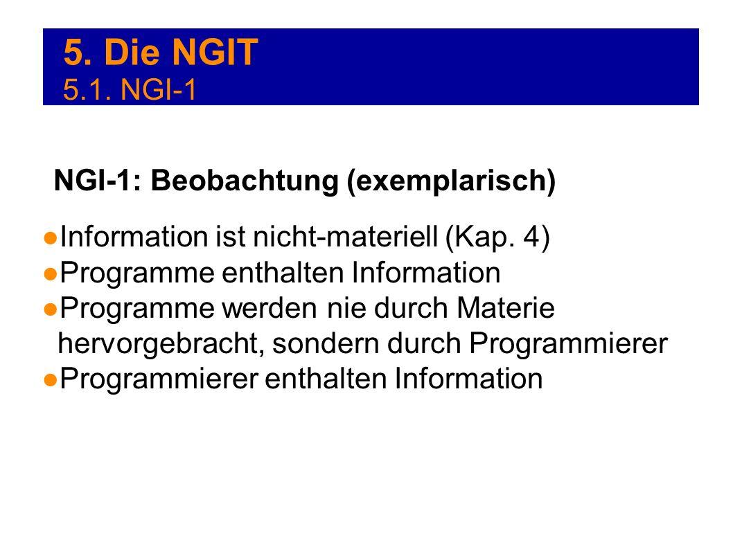 5. Die NGIT 5.1. NGI-1 NGI-1: Beobachtung (exemplarisch)