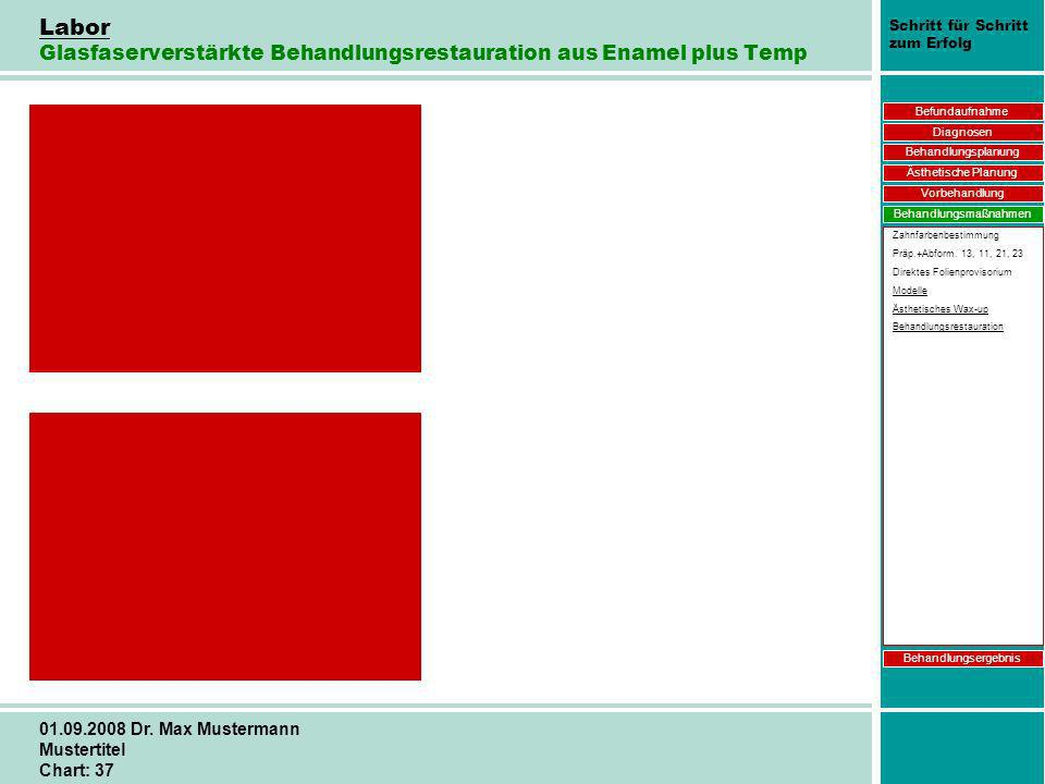 Labor Glasfaserverstärkte Behandlungsrestauration aus Enamel plus Temp