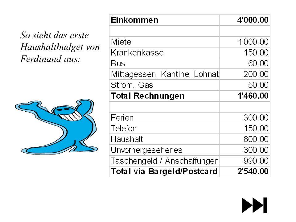 So sieht das erste Haushaltbudget von Ferdinand aus: