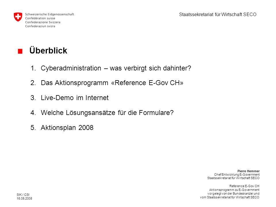 Überblick Cyberadministration – was verbirgt sich dahinter