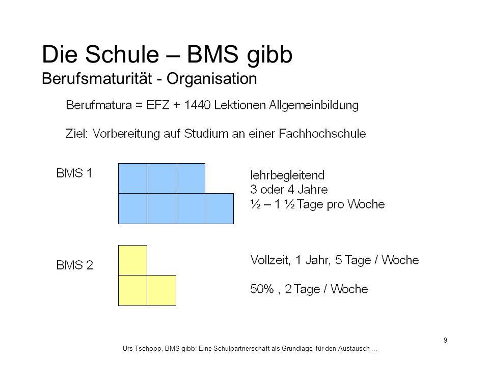 Die Schule – BMS gibb Berufsmaturität - Organisation