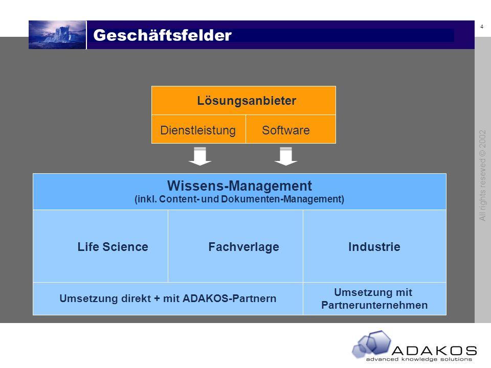 Geschäftsfelder Wissens-Management Lösungsanbieter Dienstleistung